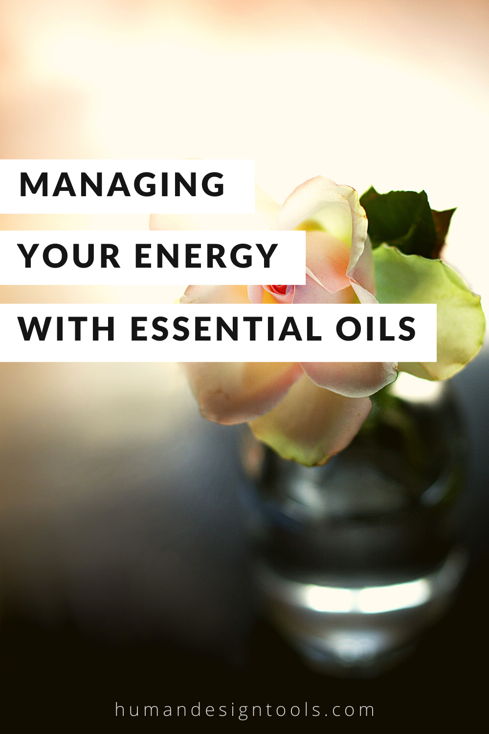 Manage Your Energy with Essential Oils